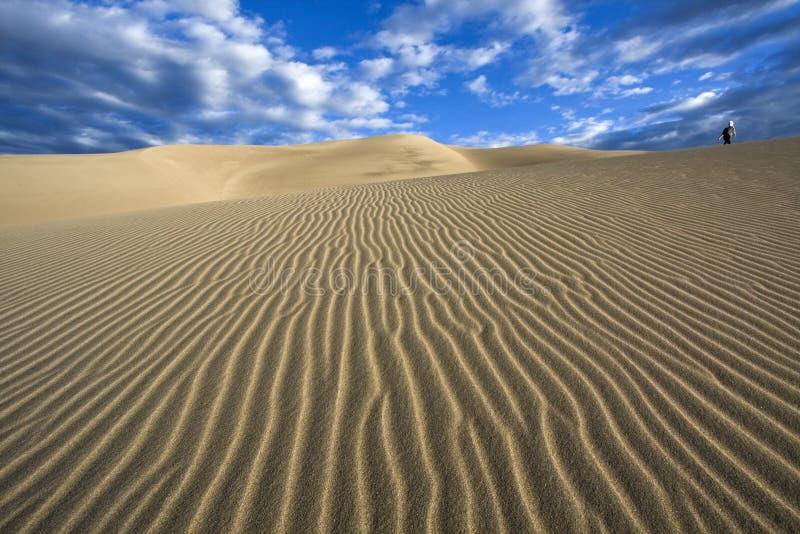 Lopend de duinen - het Grote Nationale Park van de Duinen van het Zand royalty-vrije stock afbeelding