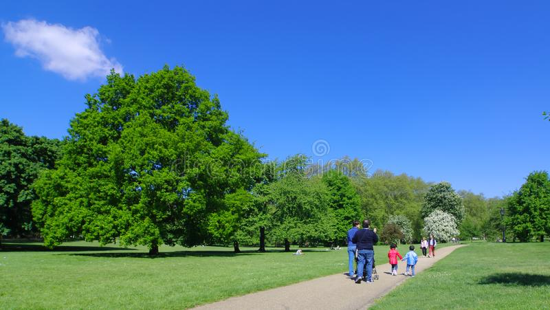 Lopend in Green Park, Londen stock foto's