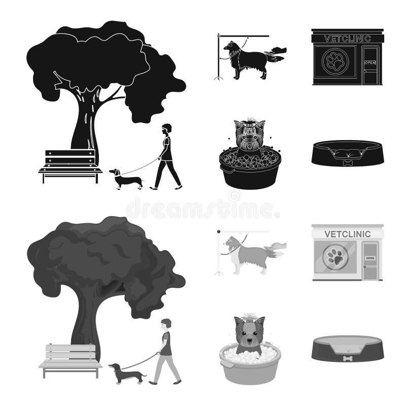 Lopend met een hond in het park, die een hond, een veterinair bureau kammen, die een huisdier baden Van het dierenartskliniek en  stock illustratie