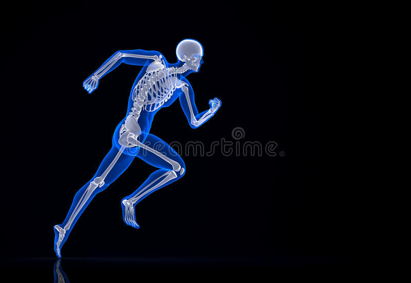 Lopend skelet Bevat het knippen weg royalty-vrije illustratie