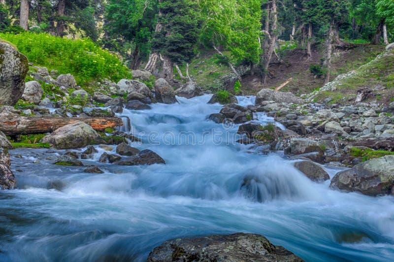 Lopend water van meer in bos royalty-vrije stock foto