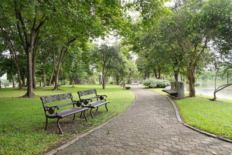 Lopend weg in Suan Luang Rama 9 Openbaar Park stock afbeeldingen
