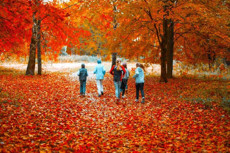 Lopende atleten in het park op een looppas in de vroege ochtend Verscheidene kinderen lopen in het hout die sporten doen stock afbeelding