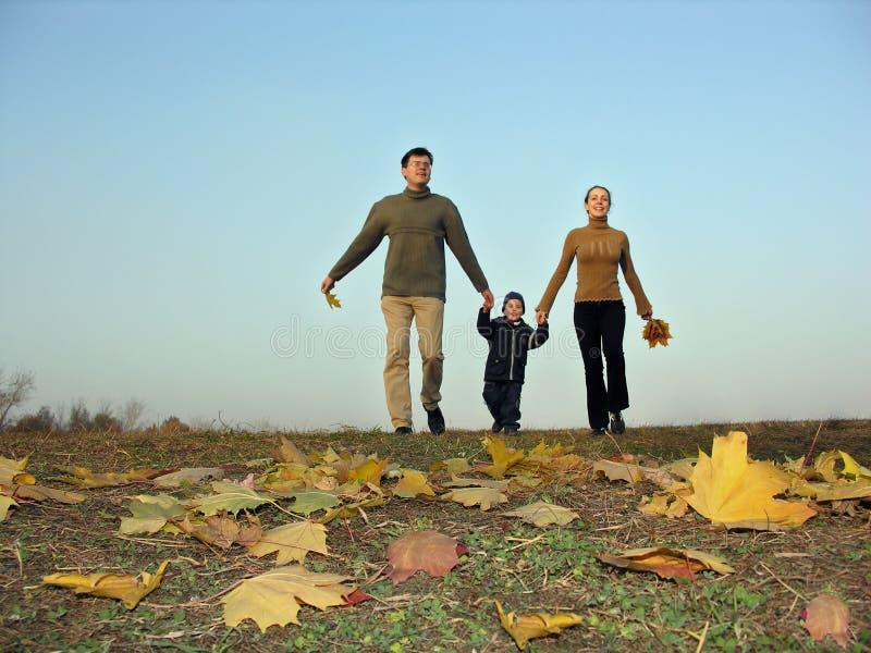 Lopende de herfstbladeren van de familiezonsondergang