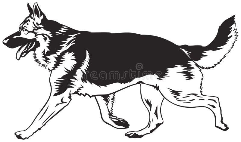 Lopende hond, Duitse herderlooppas stock illustratie