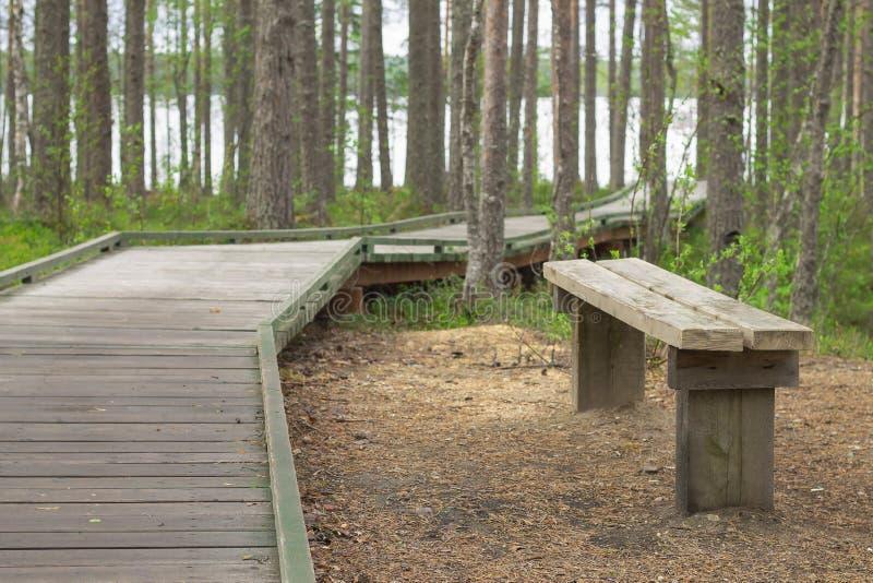 Lopende weg en bank in het bos voor rust de houten weg die op de kust van het meer leiden stock afbeeldingen