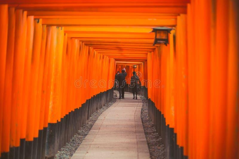 Lopp Japan, Torii nycklar i den Fushimi Inari Taisha relikskrin royaltyfri bild