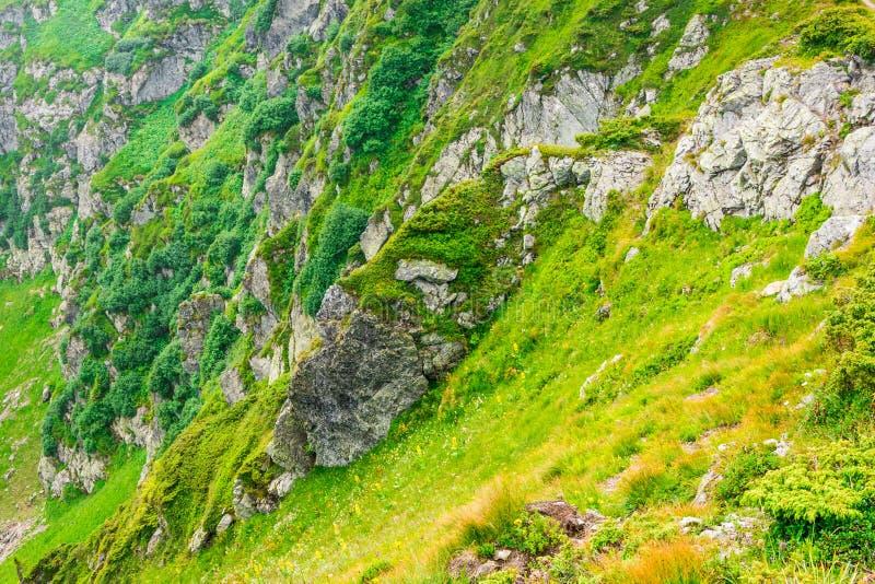 Lopp som trekking, natur Majestätiska höga gröna berg arkivfoto