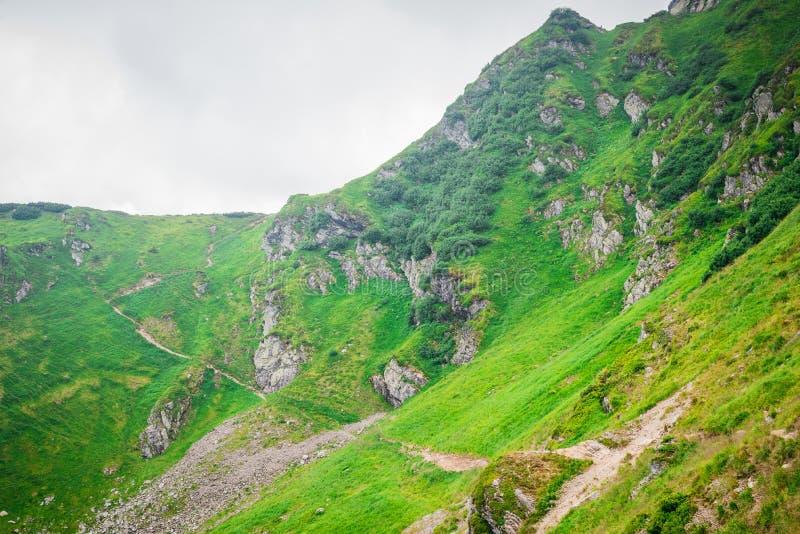 Lopp som trekking, natur Majestätiska höga gröna berg Horisontal inrama arkivfoto