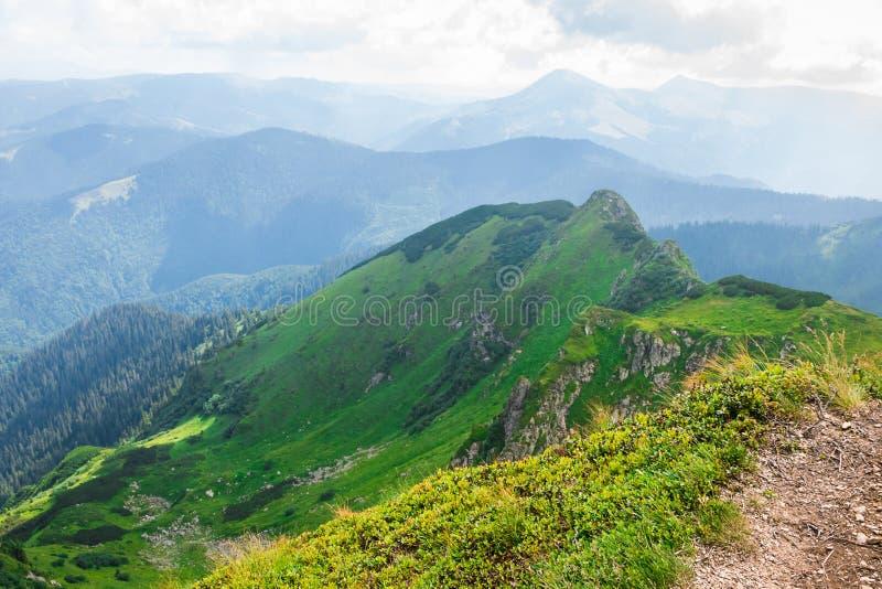 Lopp som trekking, natur Majestätiska höga gröna berg Horisontal inrama arkivbilder
