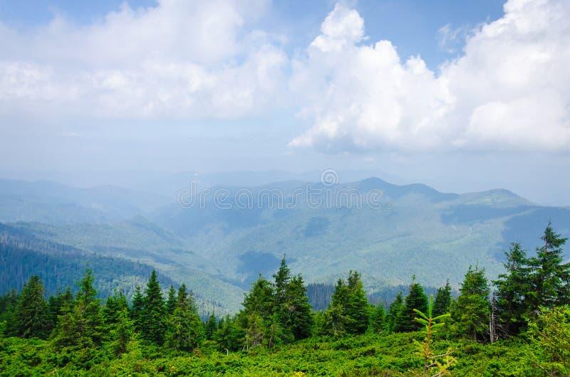 Lopp som trekking Sommarlandskap - berg, grönt gräs, träd och blå himmel Horisontal inrama royaltyfri bild