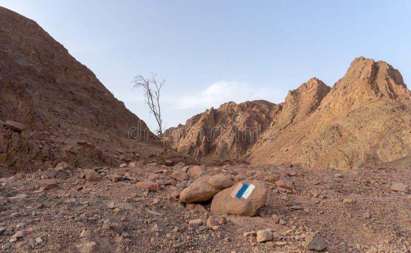 Loppet i Timna parkerar av den Arava ?knen Israel royaltyfria bilder