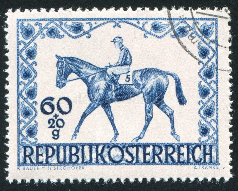 Lopphäst och jockey arkivbilder