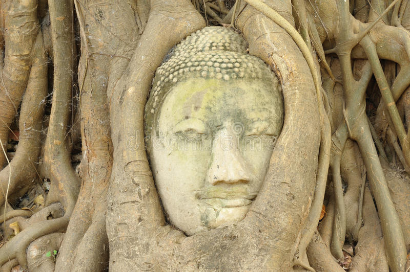 Lord Buddha Statue antique images stock