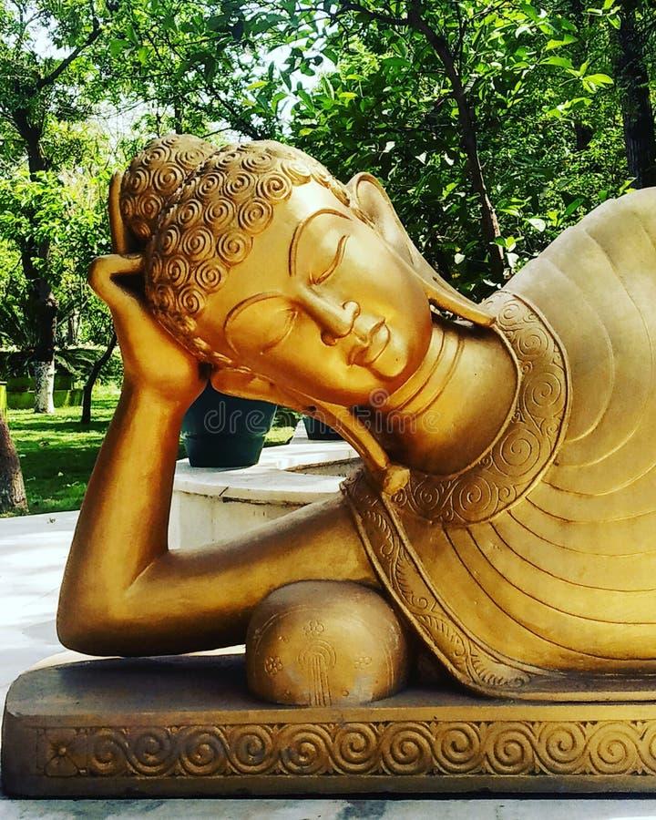 Lord Buddha u. x27; goldene Statue s stockbilder