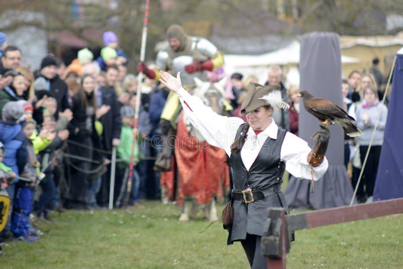 06 04 2015 Lorelay Tyskland - kvinna i traditionell medeltida kläder som rymmer falken på hennes falcony show för arm royaltyfria foton