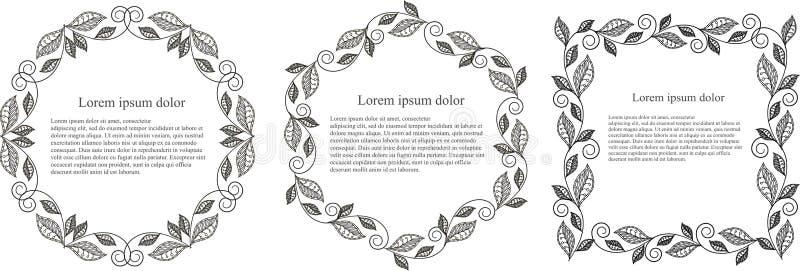 Lorem ipsum van het zwart-wit blad het ronde, hexagon, vierkante kader royalty-vrije illustratie