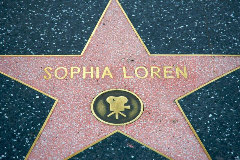 loren sophia obraz stock