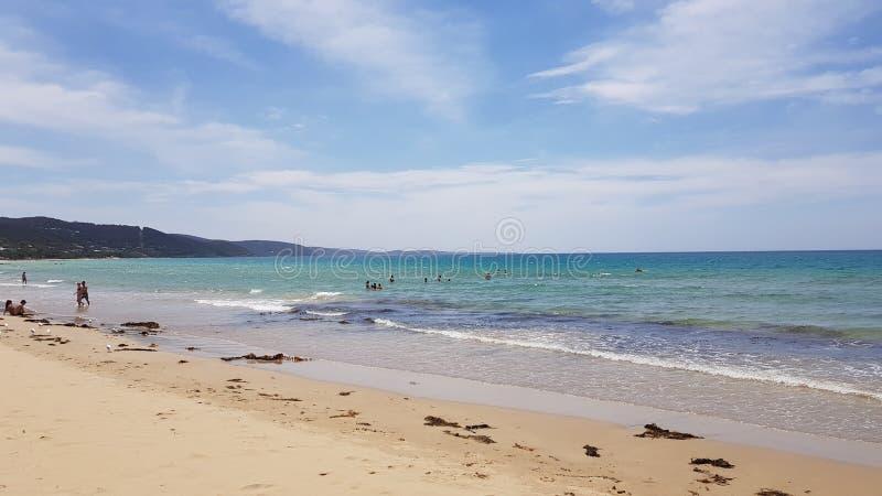 Lorne strand arkivbilder