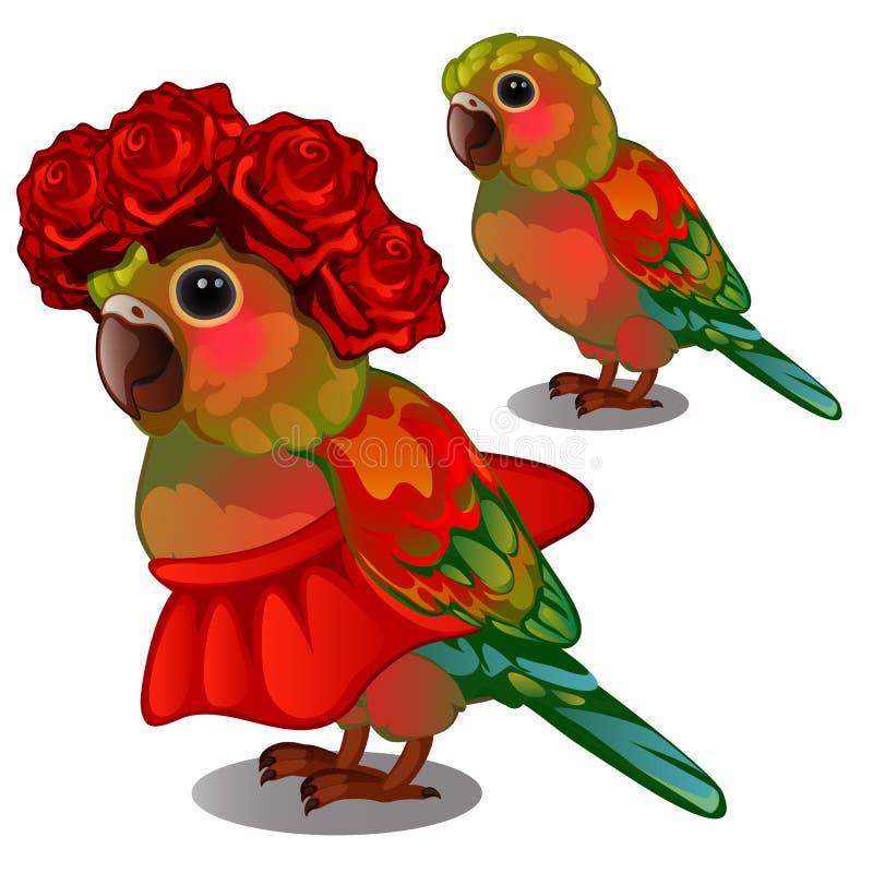 Loro colorido en una falda roja y una guirnalda de capullos de rosa en su cabeza aislada en el fondo blanco Ilustración del vecto ilustración del vector