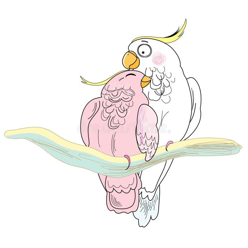 Loros del amor stock de ilustración