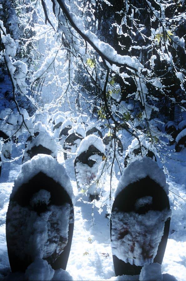 Los ángeles cubrieron concepto frío tranquilo de la nieve imágenes de archivo libres de regalías