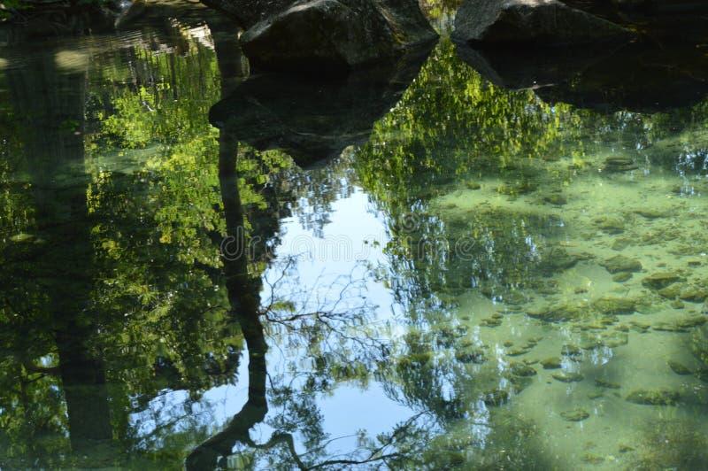 Los árboles abstractos, cielo, piedras se reflejan en las ondulaciones de la superficie del agua, a través del agua clara que ust foto de archivo libre de regalías