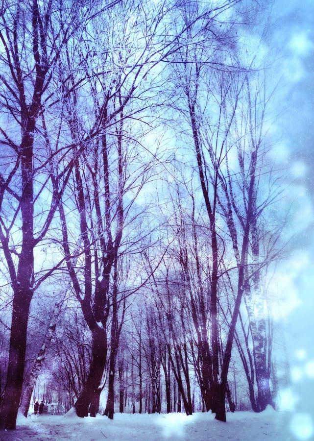 Los árboles bajo nevadas diseñan libre illustration