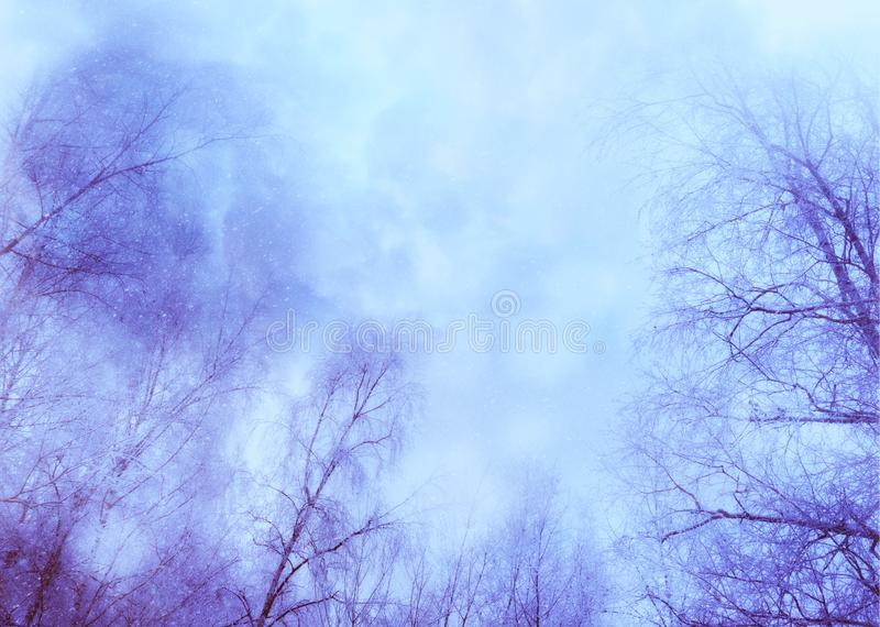 Los árboles bajo nevadas diseñan stock de ilustración