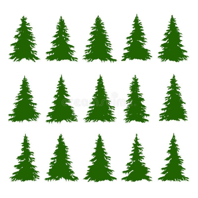 Los árboles de la conífera fijaron en el fondo blanco para hacer a Forest Backgrounds Vector ilustración del vector