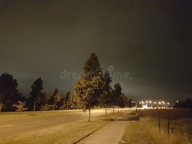 Los árboles de la noche del camino encienden la trayectoria que camina en el camino en la lluvia en la noche fotos de archivo