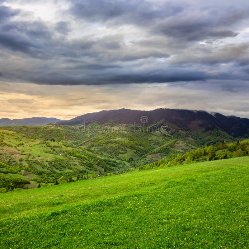 Download Los árboles De Pino Acercan Al Valle En Montañas En La Ladera Debajo Del Cielo Con Imagen de archivo - Imagen de mañana, bueno: 44853313