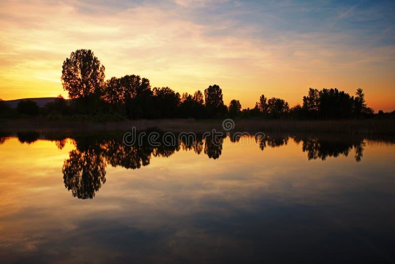 Los árboles que reflejan en un lago tranquilo riegan la superficie en la puesta del sol imagen de archivo libre de regalías