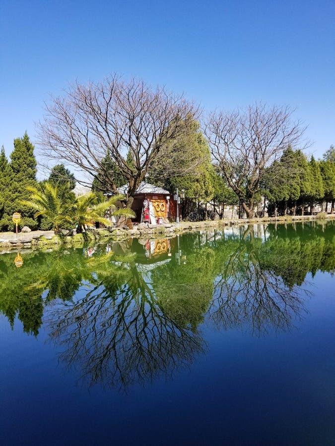 Los árboles se reflejan en el lago fotografía de archivo libre de regalías