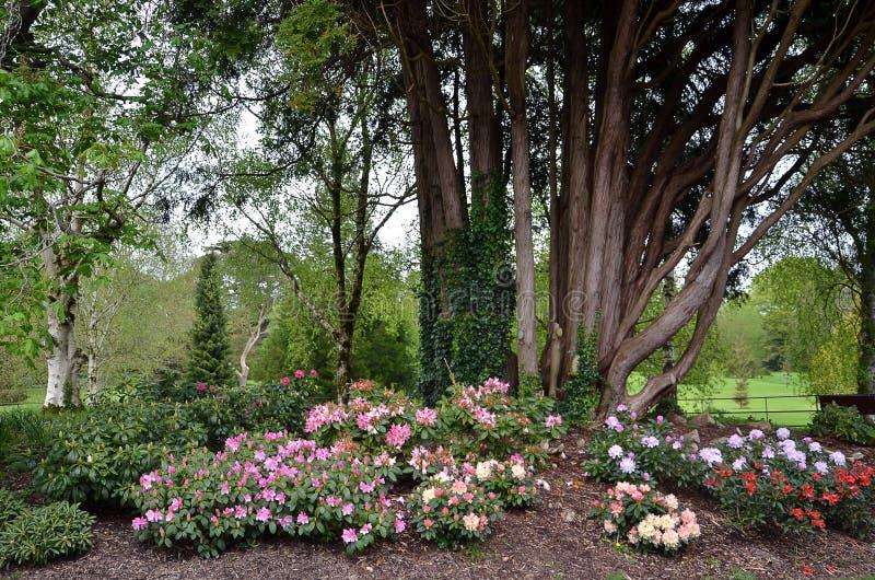 Los árboles y las flores ajardinan en parque del castillo de la lisonja fotografía de archivo