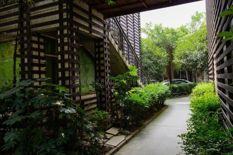 Los árboles y los arbustos verdes acercan al callejón del edificio en verano fotografía de archivo