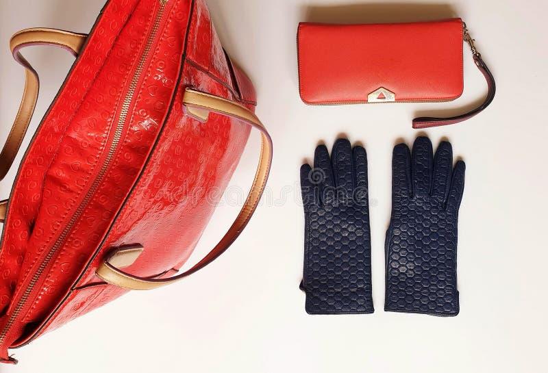 Los accesorios l primavera roja Autumn Womens Accessories de las mujeres de la moda del monedero de las gafas de sol de los guant imagenes de archivo