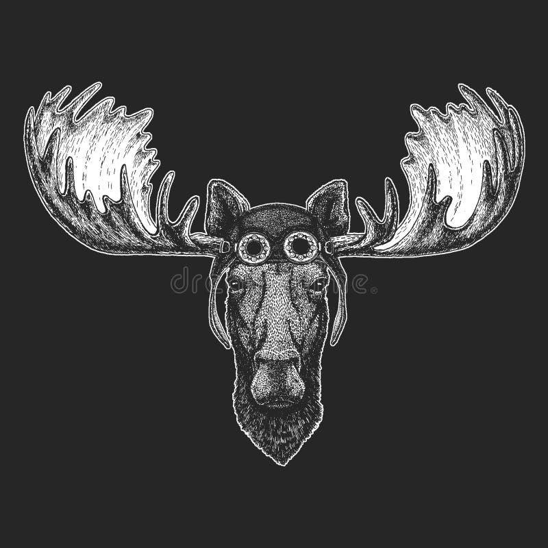 Los alces, alces dan el ejemplo exhausto para el tatuaje, emblema, insignia, logotipo, remiendo, aviador que lleva animal fresco  ilustración del vector