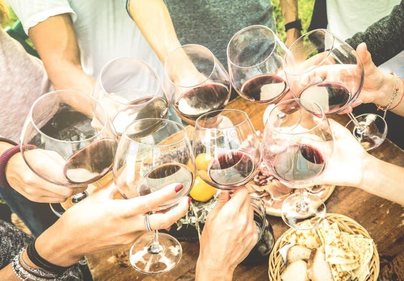 Los amigos dan tostar la copa de vino roja y divertirse al aire libre foto de archivo