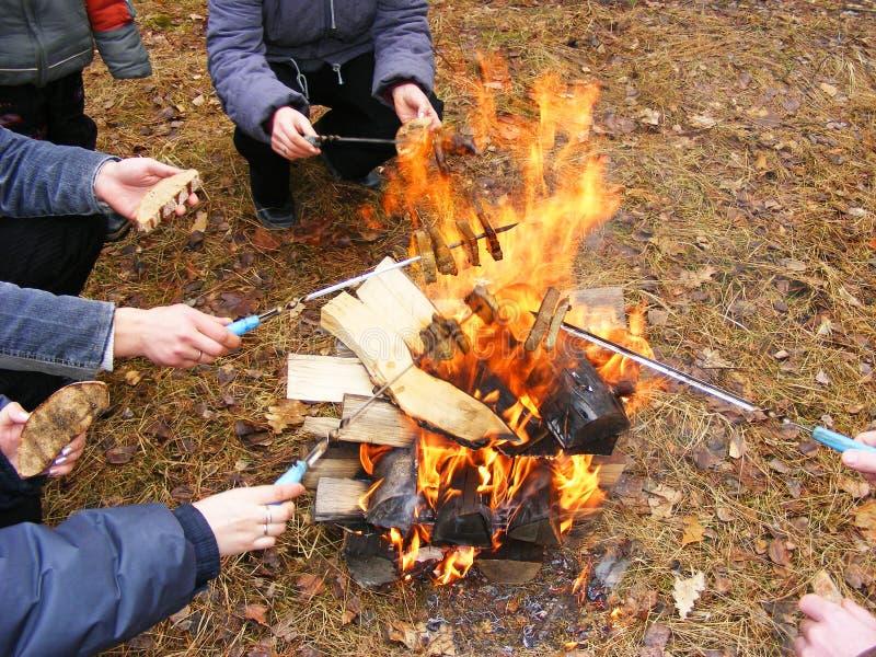 Los amigos felices acercan a la hoguera durante acampar en el bosque imagen de archivo