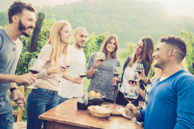Los amigos felices que tienen la diversión y drinink wine en la fiesta de jardín del patio trasero imágenes de archivo libres de regalías