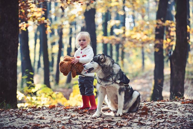 Los amigos muchacha y perro juegan en ni?o de los amigos del bosque del oto?o y juego fornido en el aire fresco en el bosque al a fotos de archivo libres de regalías