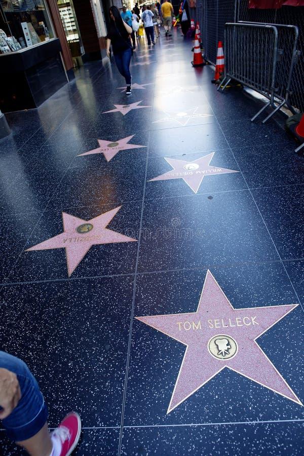 Los Angeles, CA De gang van bekendheid op Hollywood-Boulevard stock foto's
