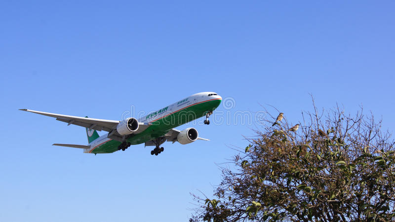 LOS ANGELES, KALIFORNIA, usa - OCT 9th, 2014: EVA Air Boeing 777 pokazywać króko przedtem lądować przy losu angeles lotniska rozw obraz royalty free