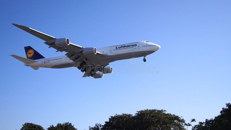 LOS ANGELES, KALIFORNIA, usa - OCT 9th, 2014: Lufthansa Boeing 747-8 MSN 37839 D-ABYP pokazywać lądować przy króko przedtem zdjęcie royalty free
