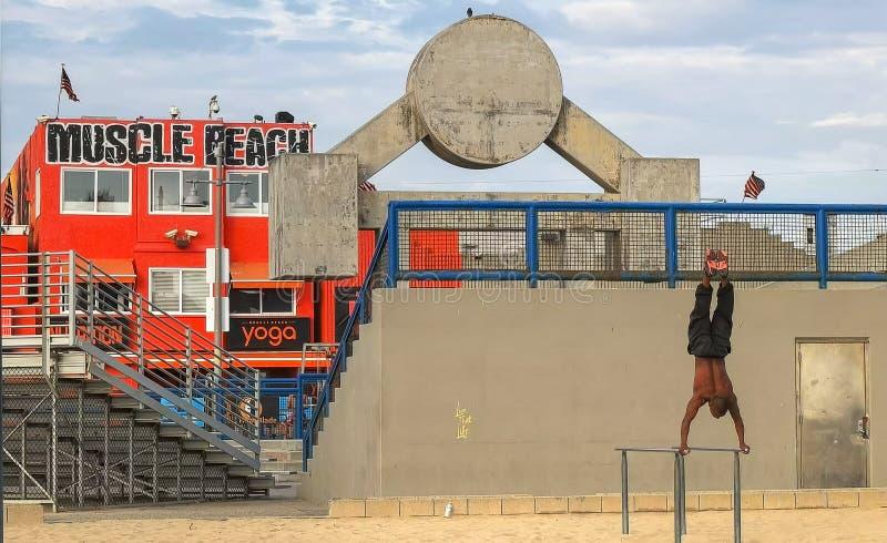 LOS ANGELES, KALIFORNIEN, USA - 25. AUGUST 2015: ein Bodybuilder führt einen Handstand auf Barren an Venedig-Strand durch lizenzfreie stockfotos