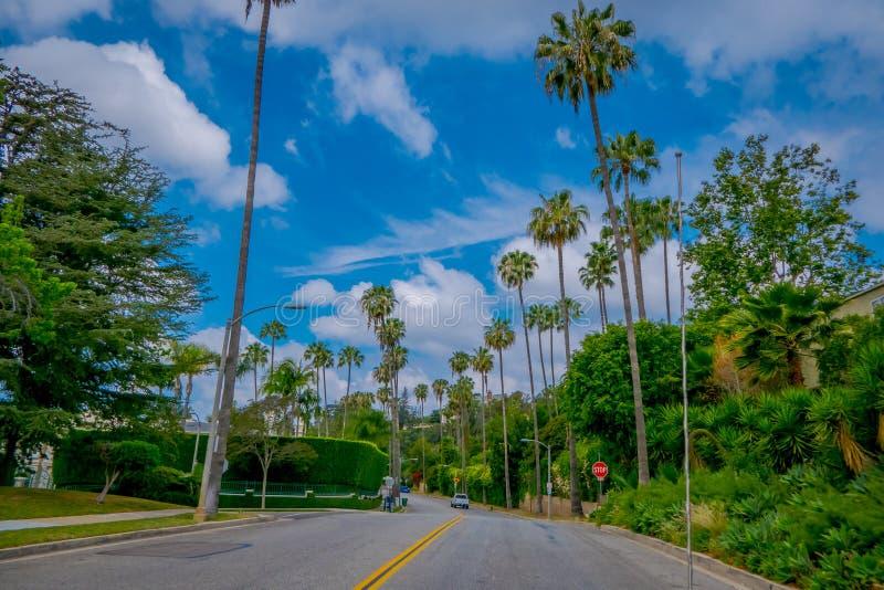 Los Angeles Kalifornien, USA, JUNI, 15, 2018: Utomhus- sikt av palmträdgatan i Beverly Hills, Los Angeles royaltyfri foto