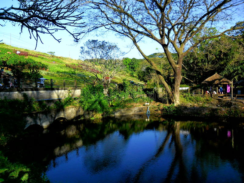 Los Angeles mes Eco park fotografia stock