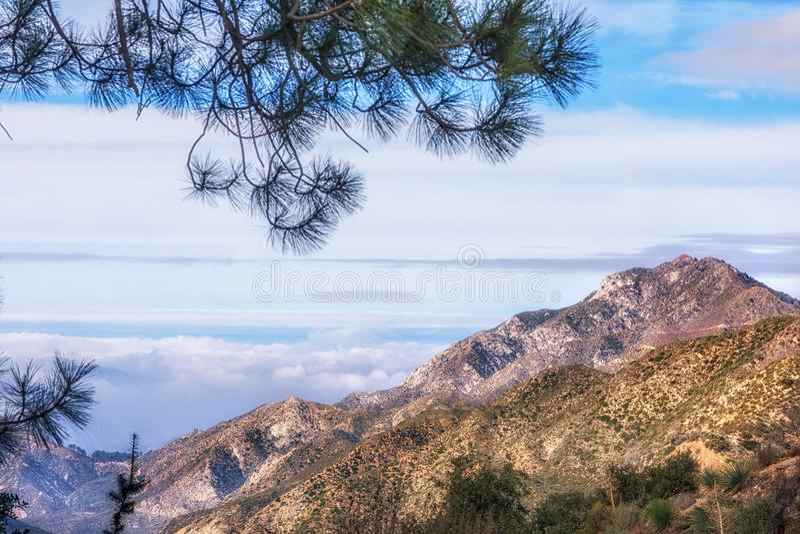 Los Angeles nationalskog på vägen till Mount Wilson arkivfoto