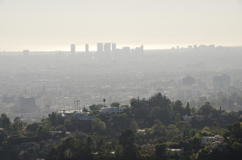 Los Angeles Skyline in Distance 8. Los Angeles Skyline in Distance as Seen from Griffith Park stock photos